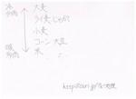 板書 地理 栽培条件 大麦 小麦 大豆 2014 w600.jpg