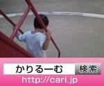 y_fb.jpg