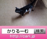 IMG_20160921_1704013.jpg